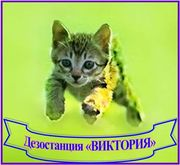 Дезостанция «ВИКТОРИЯ»,  уничтожение грызунов,  насекомых.